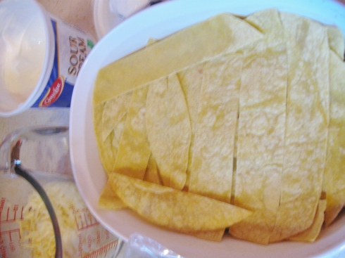 Create a layer with strips of corn tortillas.